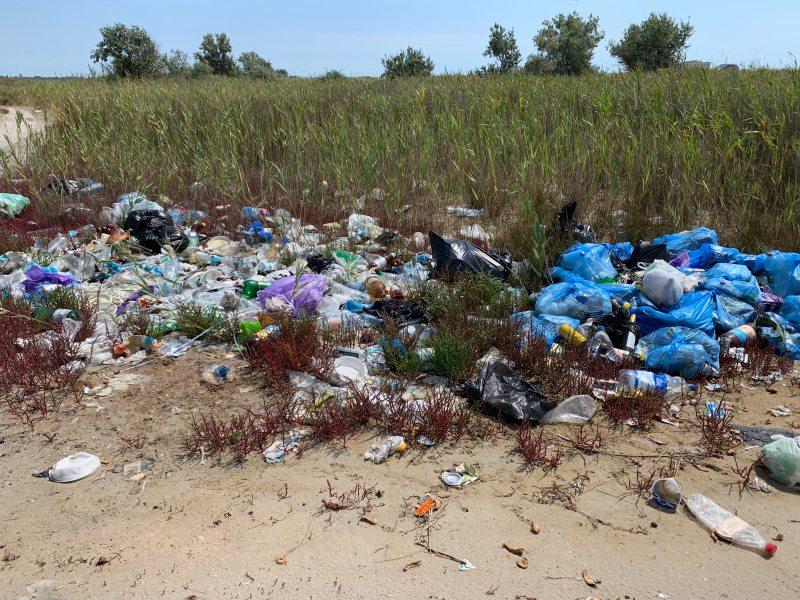 За межами селища Лазурне виявили стихійні смітники