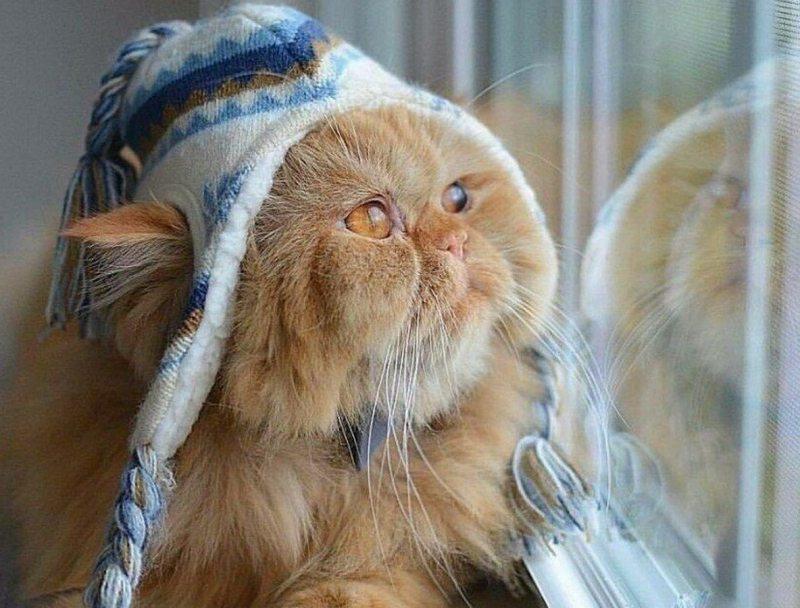 Вдягатися варто тепліше: погода готує херсонцям сюрприз