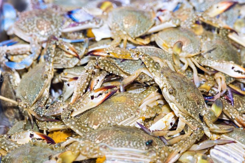 На Херсонщині прикордонники виявили браконьєра з уловом на 5 мільйонів гривень