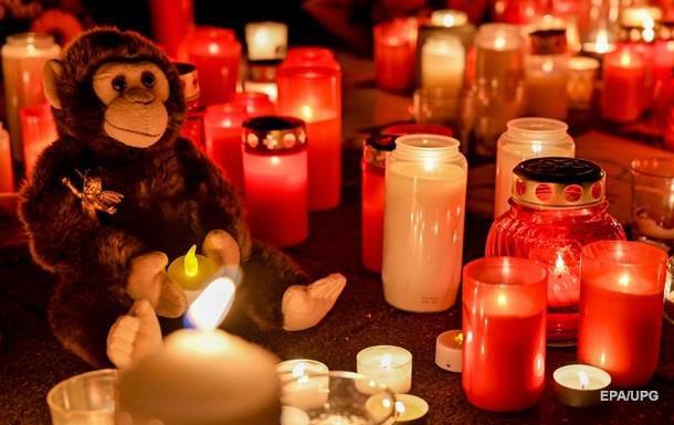 Новорічна пожежа в зоопарку Німеччини: згоріли 30 тварин