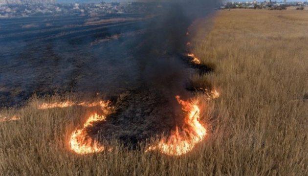 Херсонців закликають повідомляти про пожежі в плавнях