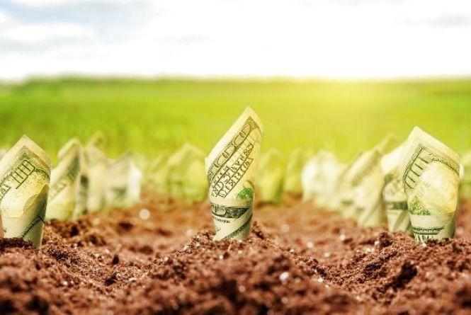 Приросту ВВП не буде, якщо відкриють ринок землі