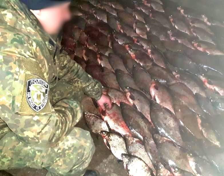 На Херсонщині затримано браконьєрів, які незаконно виловили червонокнижні види риб на понад 100 тисяч гривень