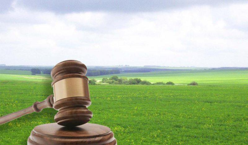 За втручання прокуратури на Херсонщині державі повернуто земельну ділянку з озером вартістю понад 400 тис. грн