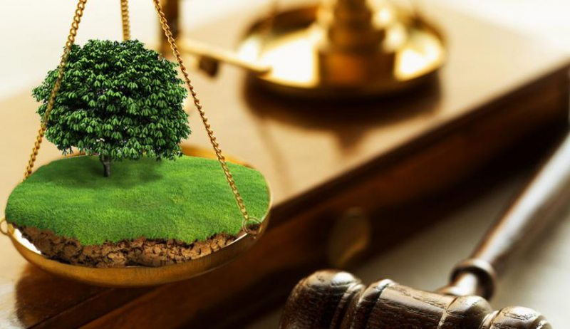 На Херсонщині прокуратура продовжує відстоювати інтереси держави у земельній сфері