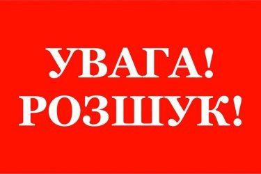 В Олешківському районі поліція розшукує 12-річного хлопчика