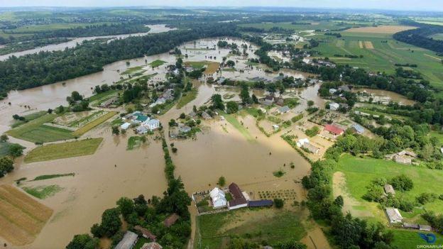 Чому затопило Карпати та чи пов'язано це з вирубкою лісів