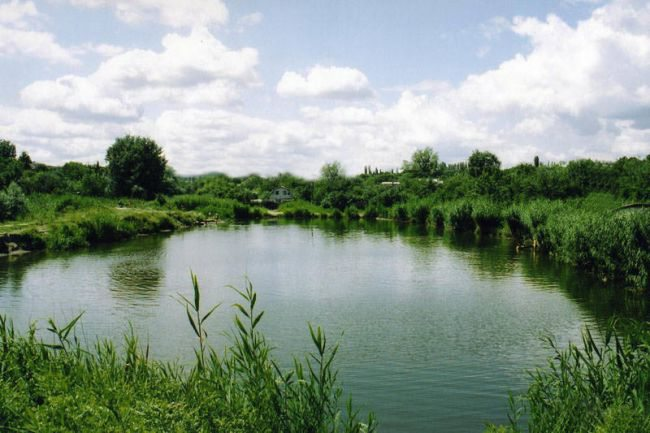 На Херсонщині прокуратура вимагає повернути державі три ставки та землю водного фонду