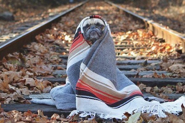 Херсонські синоптики попереджають про різке похолодання