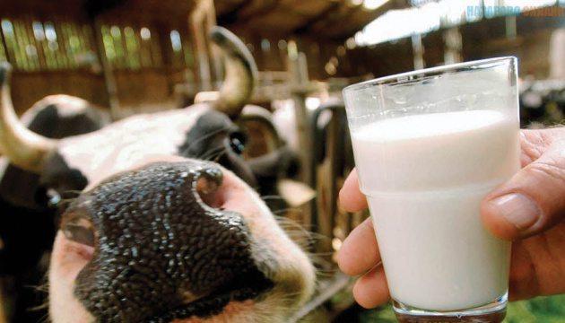 На Херсонщині фіктивні ФОПи постачали молочну продукцію, сплачуючи значно нижчий відсоток податку