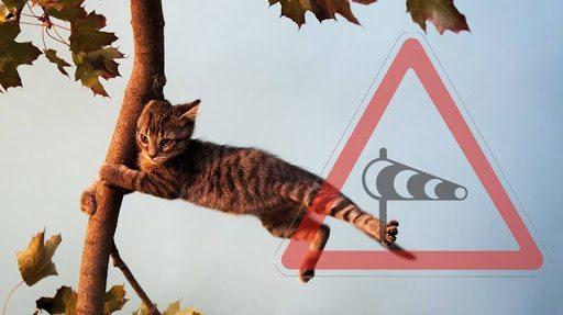 На Херсонщині через сильний вітер оголосили штормове попередження