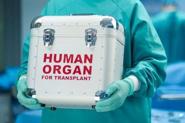 Херсонські медики готуються до операцій з трансплантації органів