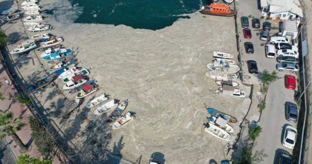 Мармурове море очищують від слизу