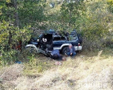 В'їхала в дерево: на Херсонщині загинула 31-річна водійка